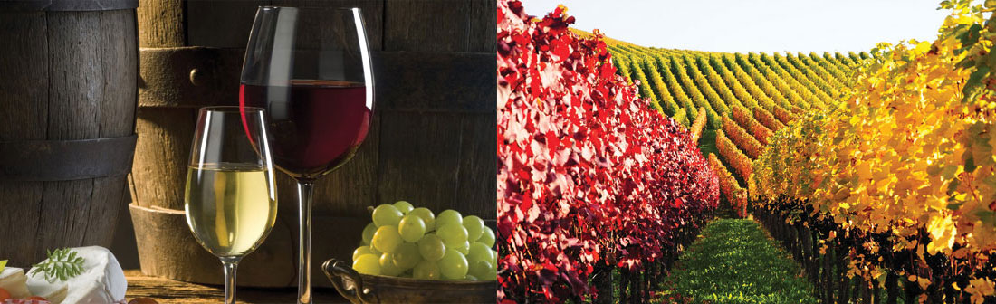 Ramada by Wyndham Niagara Falls Near the Falls - Half Day Wine Tour Package